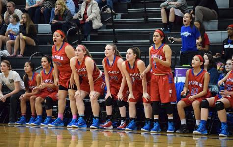 Lady Lions play into playoffs