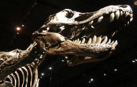 Movie Review: Jurassic World