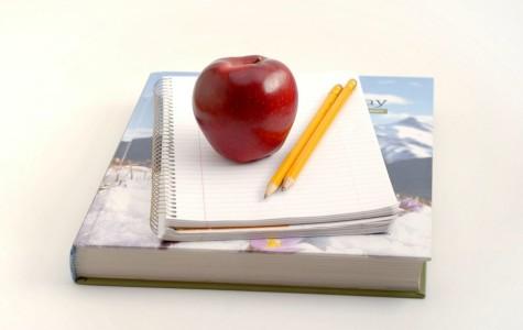 New teachers bring new visions