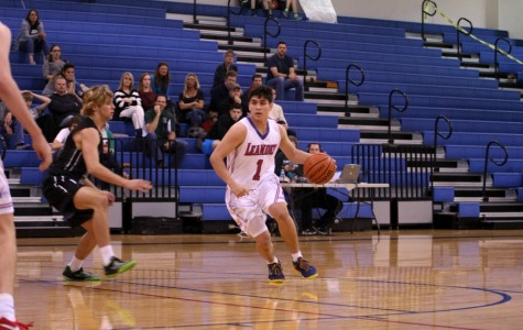 Lions fall to Timberwolves
