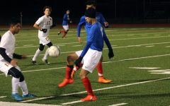Lions comeback to tie McCallum