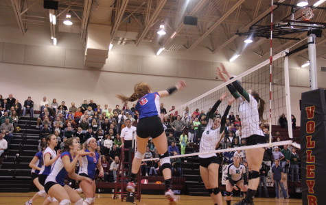 Congratulations to Area Champion Lady Lion Volleyball! Check back this week for in-depth coverage of final match.