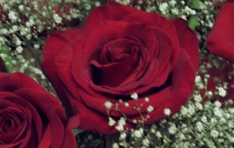 Timeless Valentine's Day