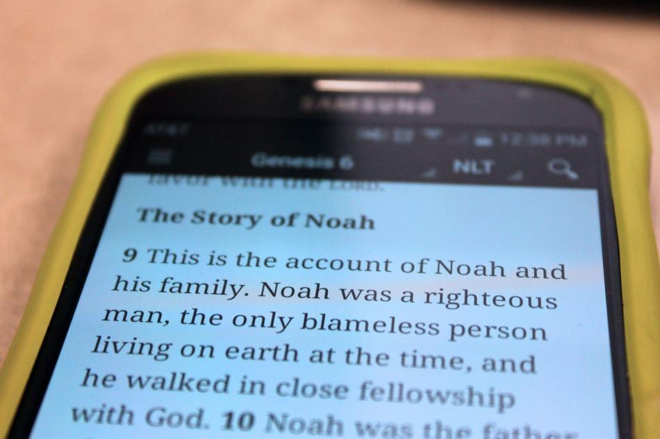 Oh No, Not Noah!