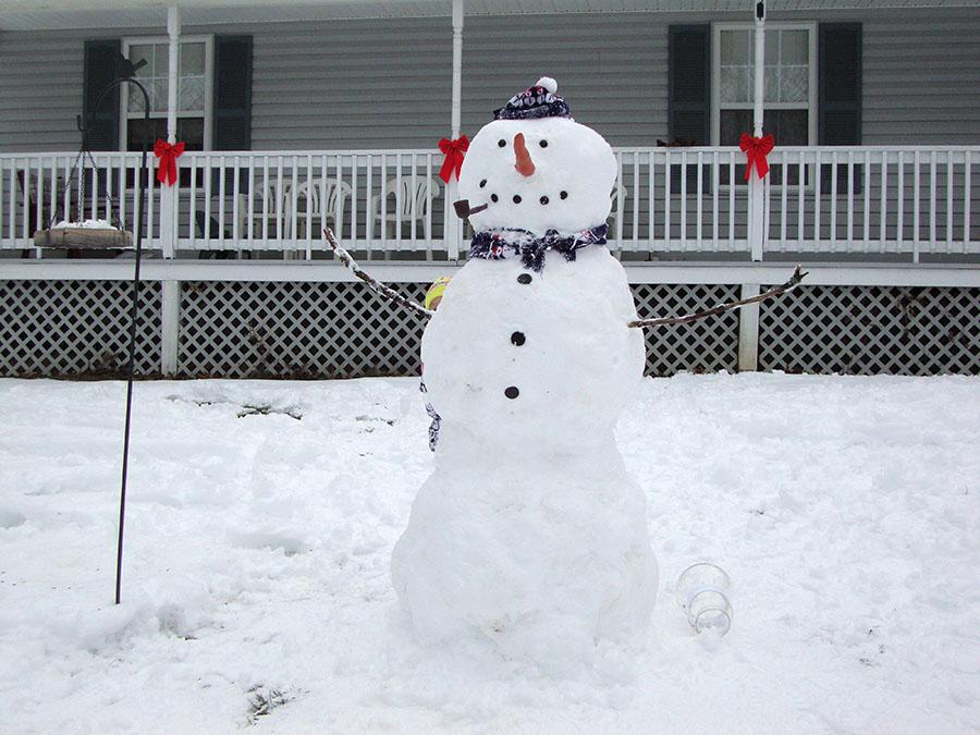 Snowmen are one of the many things Texans wish they could build during the winter.