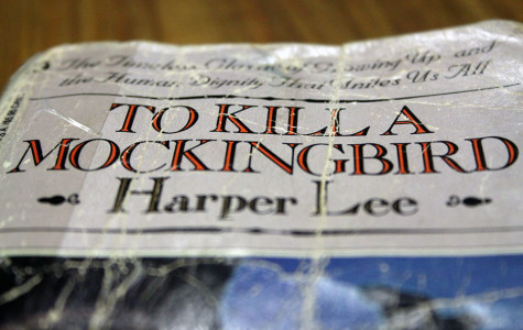 Harper Lee to publish long-awaited sequel
