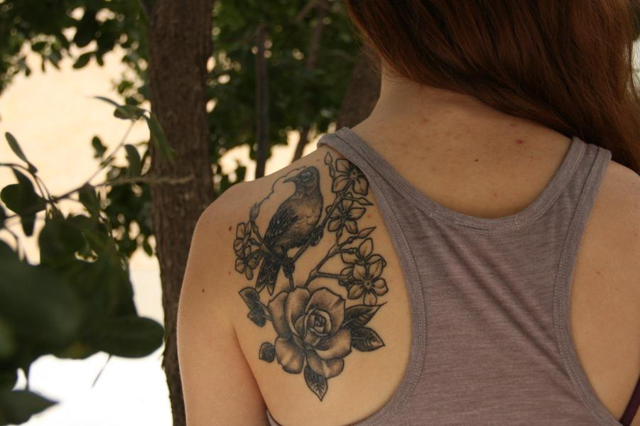 Beautiful shoulder tattoo of a bird and a rose.