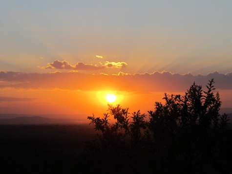 A summer sunset in Maasai Mara, Kenya. One of the most typical ways that some people associate with summer is sunsets.