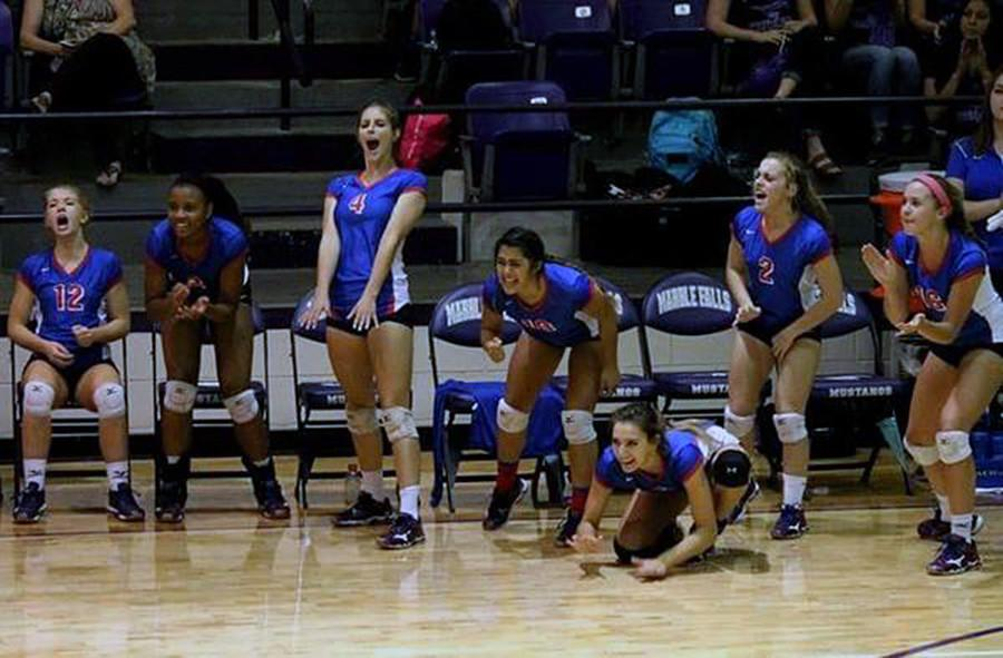 The Lady Lions celebrating a score during a set. The girls tend to get very excited watching the game on the bench.