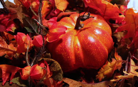 10 best things about fall