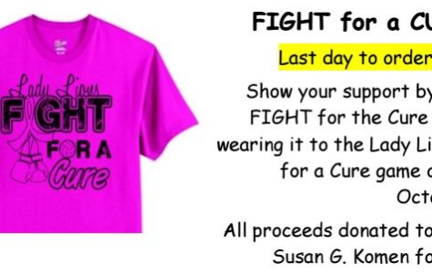 An image of the shirt with additional information about the fundraiser. This flyer was designed by the volleyball booster club to benefit sales.