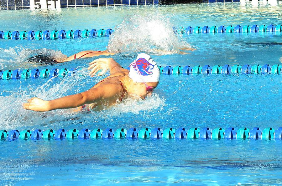 Swimmer swims Butterfly. The next meet against Rouse will be on October 10th.