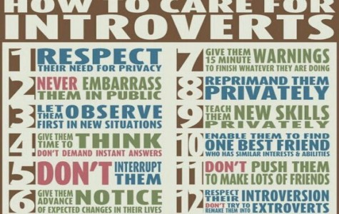 "A verbal post listing suggestions for how to respect individuals who are introverted. It includes  respecting their need for privacy, and summarizes letting them thrive under their own ""circumstances""."