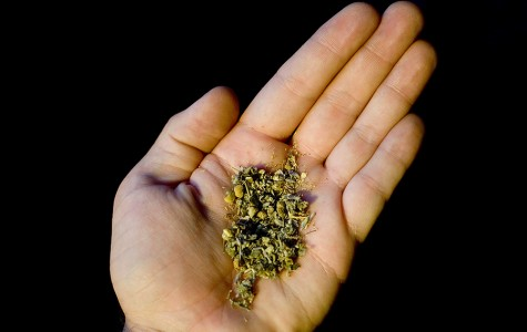 Synthetic cannabis use on the rise