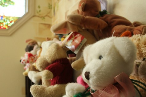A collection of stuffed animals the center uses in therapy. This helps to provide a sense of not being alone to a child or adolescent in interviews.