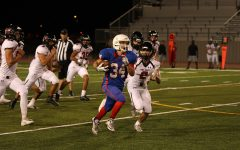 Lions fall to Hays, Lake Travis in consecutive losses