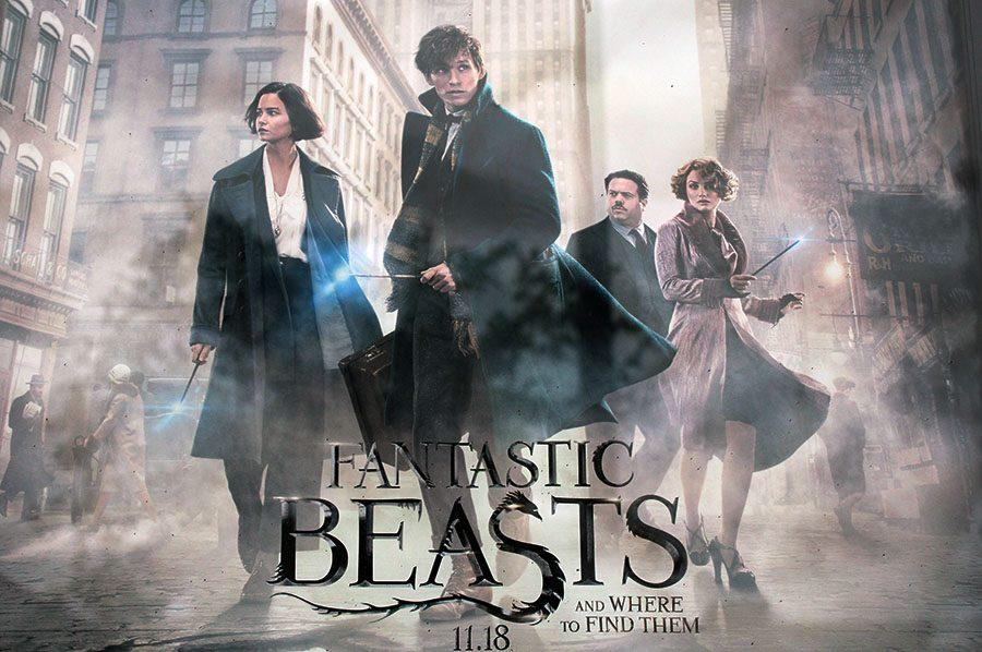 Fantastic Beasts and Where to Find them was set in the 1920's, before any of the events of the Harry Potter franchise occurred. It follows the story of Newt Scamander, a magizoologist.