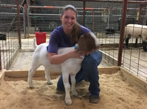 Brieanna Damron, an officer in FFA, raises a goat and a pig. They both live at Leander High School.