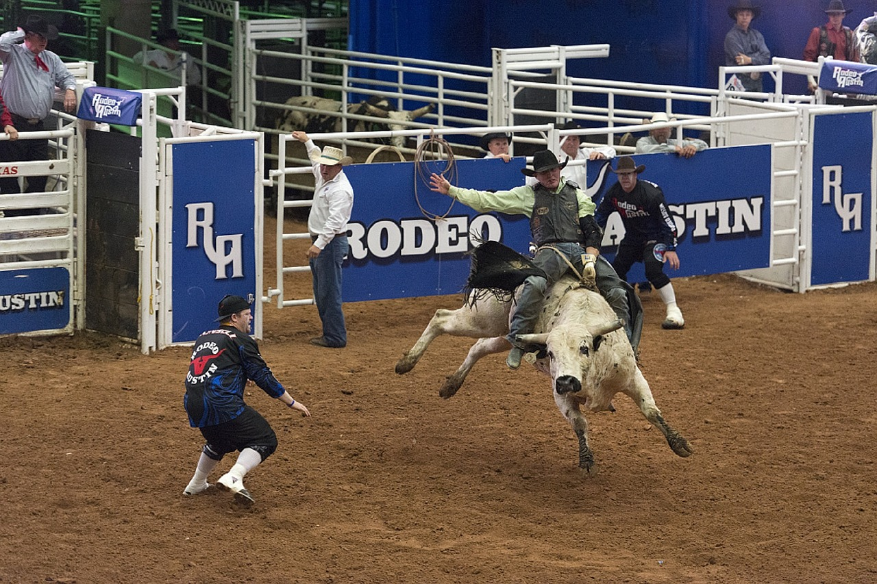 Rodeo Austin is a two week long event held in Downtown Austin. There are many things to do such as fair rides, games, food and stock shows.
