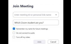 Take this quiz to find out what kind of Zoom student you are!