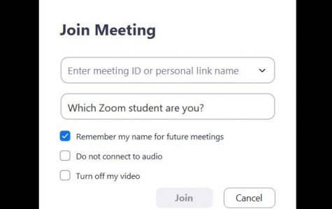 Take this quiz to find out what kind of Zoom student you are.